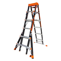 LITTLE GIANT SELECT STEP FIBERGLASS 6'-10'
