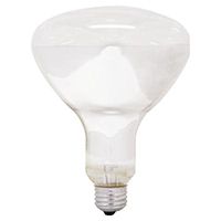 GE LIGHTING 250R40/1 6PK