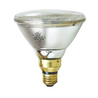 GE LIGHTING 175PAR38/HEAT