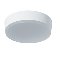 RAB LIGHTING SKEET LED SURFACE MOUNT FIXTURE ROUND