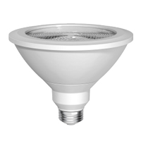 GE LIGHTING LED18D38OW385025 1700L 5000K 120W EQUAL